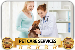 top-rated-pet-services-scottsdale-best-pet-care-company-scottsdale-arizona